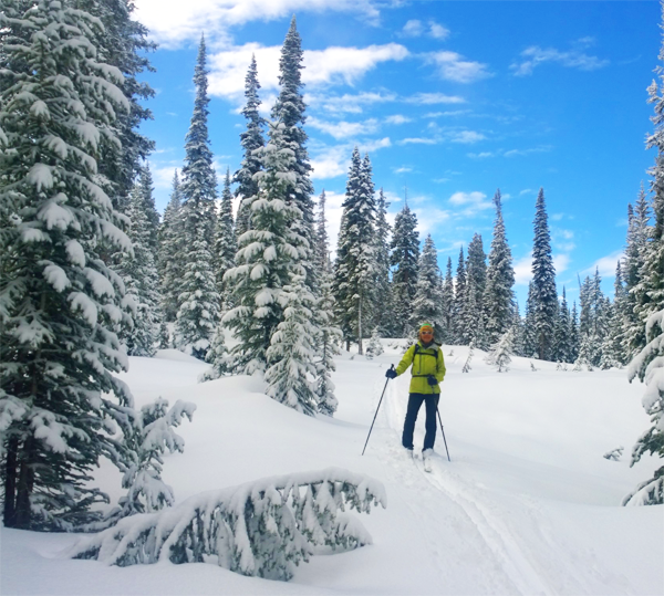 history of us forest service on winter travel colorado